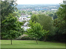 TQ3473 : View from Horniman Museum Gardens, Forest Hill by pam fray