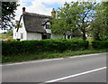 SO7803 : Thatched cottages, Frocester by Jaggery