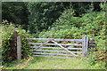SO1701 : Entrance to Nant-y-Felin Wood by M J Roscoe