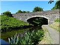NS9775 : Woodcockdale Bridge No 48 by Mat Fascione