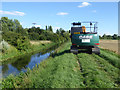 TL5873 : Weed cleaning Soham Lode by Robin Webster