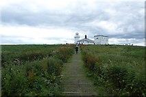 NU2135 : Boardwalks on Inner Farne by DS Pugh