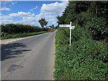 TG3311 : Road sign, Woodbastwick Road by Hugh Venables