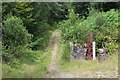 SO1701 : Lower entrance to Nant-y-Felin Wood by M J Roscoe