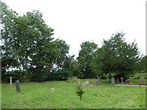 TM2692 : St. Margaret, Topcroft: churchyard (g) by Basher Eyre