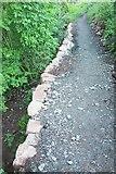 SX9065 : Path near St Michael's Chapel by Derek Harper