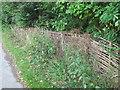 SE2336 : Hurdle fence by Stephen Craven