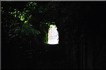TM3863 : The light at the end of the tunnel by Arjen Bax