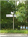 TM0572 : Roadsign on the B1113 Finningham Road by Adrian Cable
