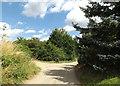 TM0374 : Kiln Farm Lane & footpath by Adrian Cable