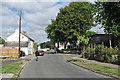 TL4856 : Cherry Hinton: Fisher's Lane by John Sutton