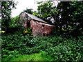 H5473 : Disused barn, Bracky by Kenneth  Allen
