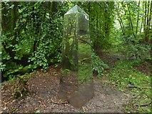 NS4276 : Obelisk artwork by Lairich Rig