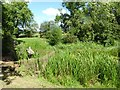 SO8843 : Sluice gate, Croome Park by Philip Halling