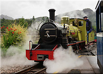 NY1700 : 'Northern Rock' at Dalegarth by Peter Trimming