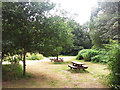 SE2840 : Picnic benches in Adel Woods by Stephen Craven