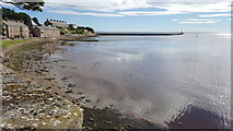 NU0052 : Berwick Pier from Fisher's Fort by Clive Nicholson
