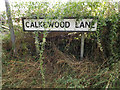 TM0175 : Calkewood Lane sign by Adrian Cable