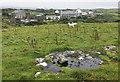 B9935 : Castlebane near Dunfanaghy by Rossographer