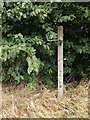 TM0375 : Footpath sign off Hinderclay Road by Adrian Cable