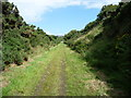 SC2988 : Shallow cutting, former Manx Northern Railway by Christine Johnstone