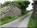 SC2988 : Abutments of dismantled bridge, near Ballacarnane by Christine Johnstone