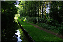 SO8688 : Staffordshire & Worcestershire Canal, Greensforge by Stephen McKay