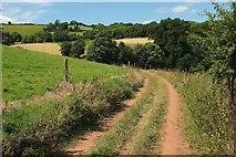 SX8158 : Path from Sharpham by Derek Harper