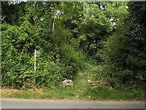 TQ4863 : Public footpath, Chelsfield by Malc McDonald