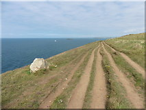 SW8576 : South West Coast path(s) by Roger Cornfoot