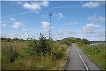 NZ4719 : South Tees Cycleway by Richard Webb