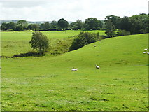 SD7266 : Footpath across a field and a little valley, Clapham by Humphrey Bolton