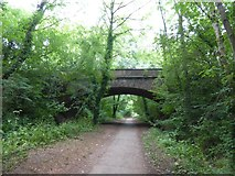 SS9712 : Tidcombe Bridge over former railway line, Tiverton by David Smith