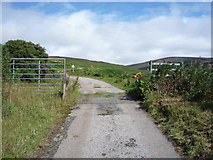 NC9410 : Cattle grid on the Glen Loth road, Lothbeg by JThomas
