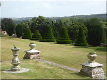 TR0653 : Topiary at Chilham Castle gardens by pam fray