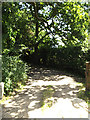 TL9971 : Entrance to Church Farm by Adrian Cable