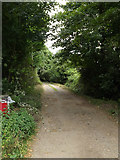 TL9875 : Wood Lane Byway to Dunhill Lane by Adrian Cable