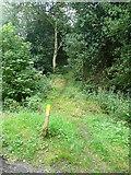 SE0328 : Sowerby Bridge FP1 at Wood Lane, Midgley by Humphrey Bolton