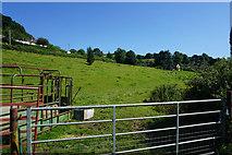 ST7693 : Fields north of Wotton-under-Edge by Bill Boaden