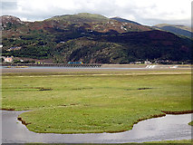 SH6214 : Salt marsh near Morfa Mawddach by John Lucas
