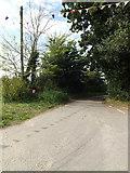 TM0890 : Cuffer Lane, New Buckenham by Adrian Cable