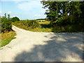 TQ4906 : Footpath Junction near Firle by PAUL FARMER