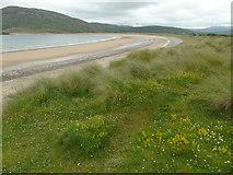 C3548 : Tullagh Bay (east) by Carroll Pierce