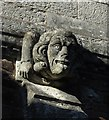 SX8060 : Gargoyle, St Mary's church, Totnes by Derek Harper