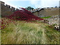 SK9771 : Wave at Lincoln Castle by Richard Humphrey