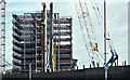 J3474 : City Quays, Belfast (September 2016) by Albert Bridge