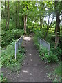 NZ1257 : Footbridge over un-named stream, Chopwell Wood by Anthony Foster