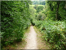 SJ2742 : A green and pleasant land by John Haynes