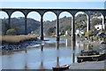 SX4368 : Calstock Viaduct by N Chadwick