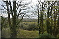 SW7943 : View from the Cornish Main Line near Newbridge by N Chadwick
